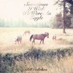 Sometimes_I_Wish_We_Were_an_Eagle-Bill_Callahan_480