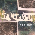 santigold-your-voice